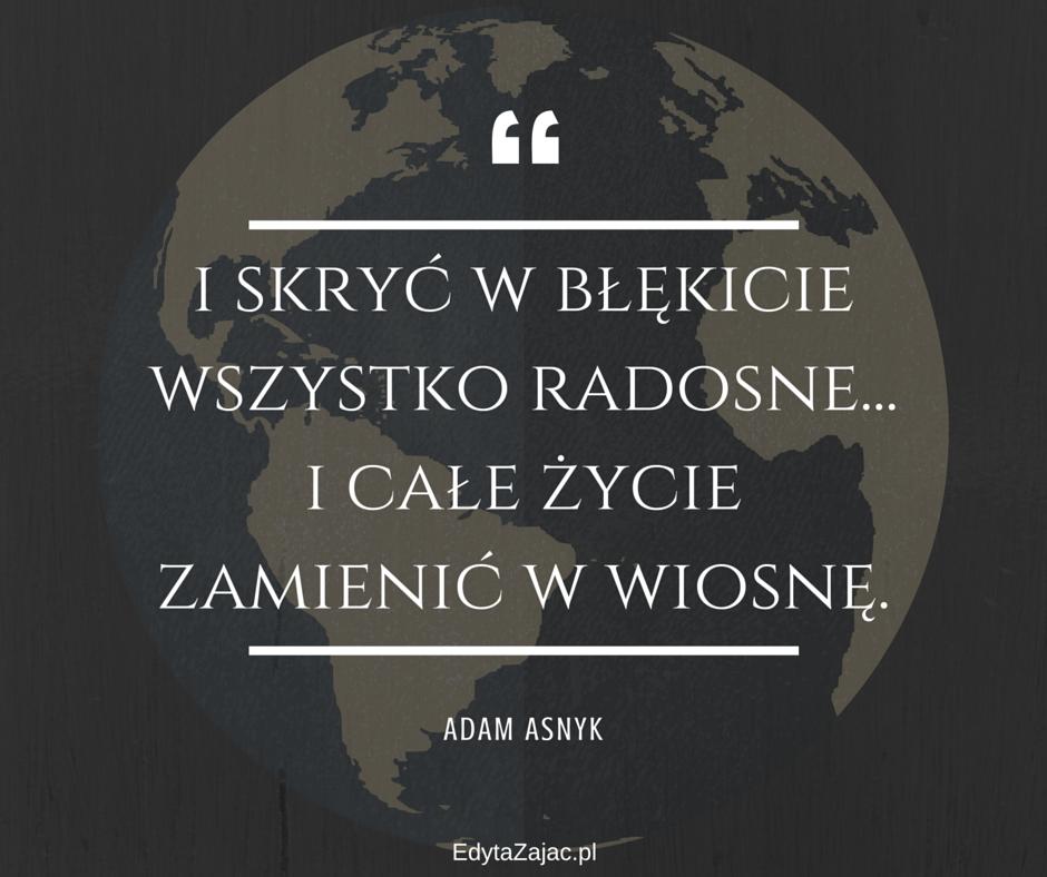 EdytaZajac.pl (3)